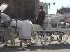 white-hearse