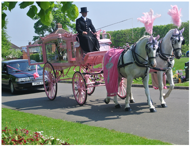 Pink Horse Drawn Hearse