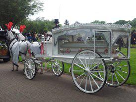 horse-drawn-funerals-white-hearse-4