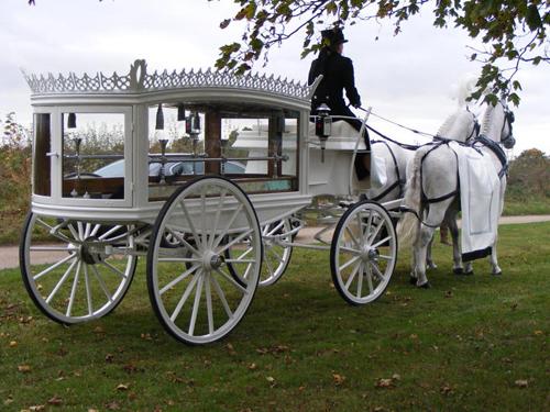 white-horse-drawn