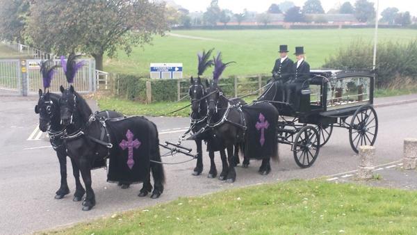 gypsy-horse-drawn-funerals3