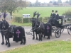 gypsy-horse-drawn-funerals3