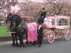 pink_hearse_004
