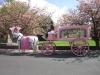 pink_hearse_042