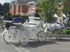 white-hearse-02