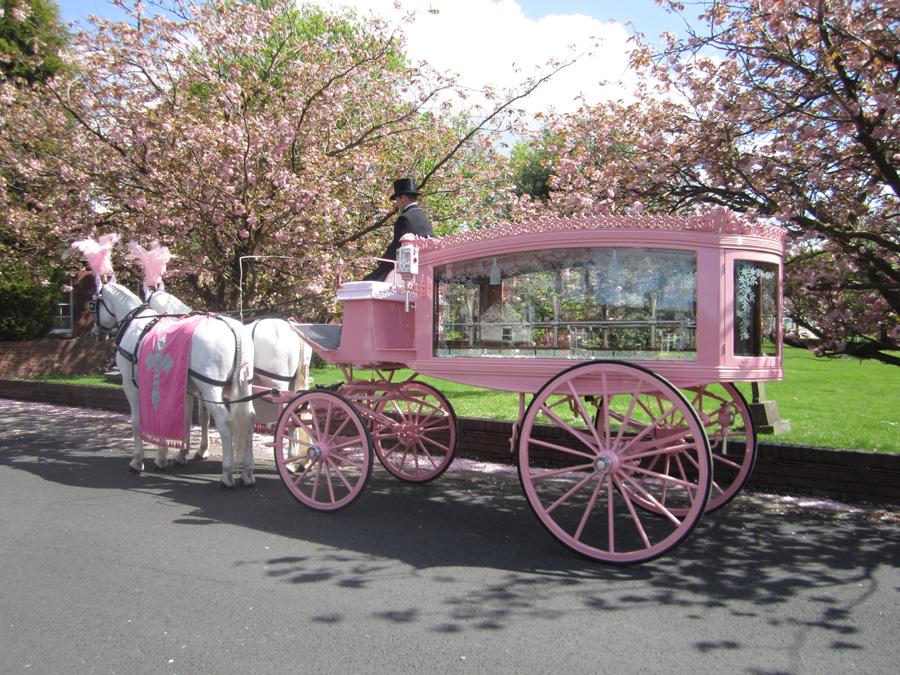 pink_hearse_048