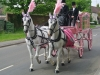1st-funeral-with-pink-hearse-135