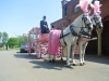 pender-pink-hearse-244