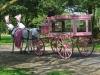 pender-pink-hearse-440