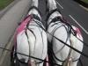 pink_hearse_099