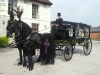 black-horse-drawn