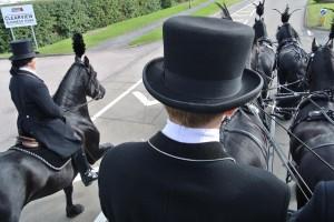 gyspy horse drawn funerals